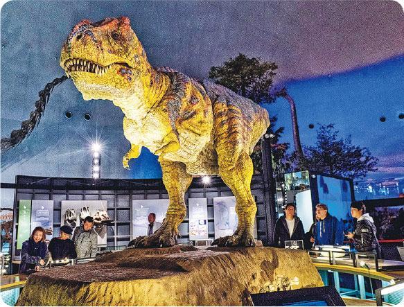 日本 旅遊 恐龍 博物館 福井 恐龍王國 勝山市