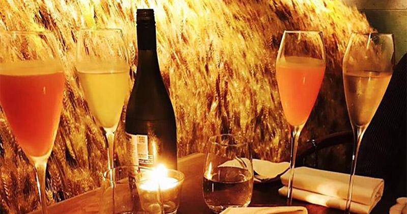 Stacey的葡萄酒世界 – 常見釀酒葡萄品種貴腐甜酒來自高冷王后雷司令